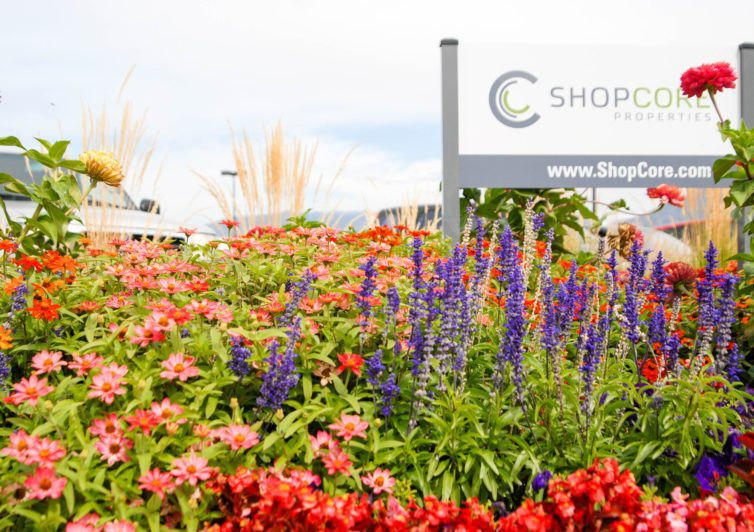 Commercial landscape service in Park City