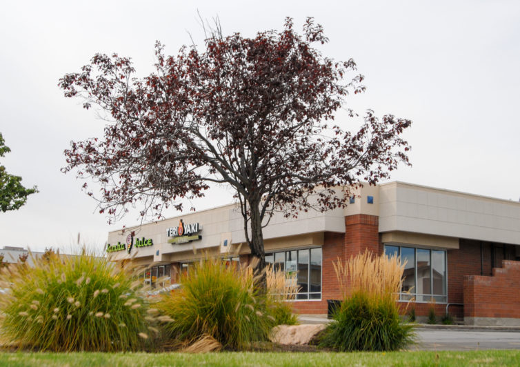 Commercial property landscape maintenance in Provo, Utah